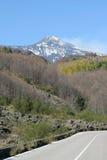 Mening van de Vulkaan van Etna Royalty-vrije Stock Afbeelding