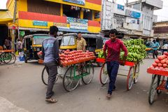 Mening van Devaraja-Markt in Mysore, India royalty-vrije stock fotografie