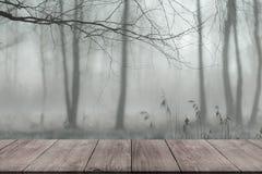 Mening van donkere houten doorgang, lijst of brug aan bosco Stock Fotografie