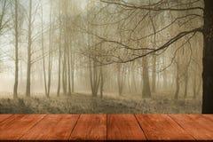 Mening van donkere houten doorgang, lijst of brug aan bosco Stock Foto