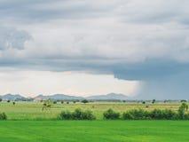 Mening van Donkere wolken en Stortbui over de padiegebieden Royalty-vrije Stock Foto