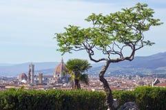 Mening van Duomo (Florence) royalty-vrije stock afbeelding