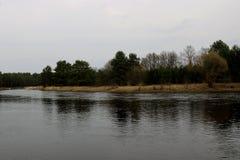 Mening van een groot blauw meer waarlangs de bomen groeien stock afbeeldingen
