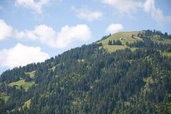 Mening van een Heuvel in Zwitserland Royalty-vrije Stock Foto's
