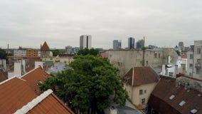 Mening van een huiskoekoek in de oude stad aan Tallinn, Estland stock video