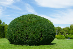 Mening van een mooie tuin Stock Foto