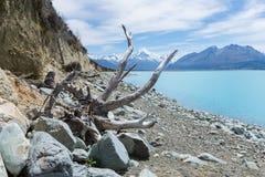Mening van een sowy berg door door takken van een dode boom Royalty-vrije Stock Afbeeldingen