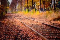 Spoorweg in de herfst Royalty-vrije Stock Afbeelding