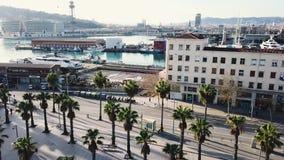 Mening van een tropische stad vanaf de bovenkant van een palm voorraad Hoogste mening van de palmen in stad stock footage