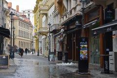 Mening van een voetstraat in Boekarest Stock Afbeelding