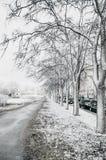 Mening van een weg met bomen in de koude sneeuwlente Stock Afbeelding