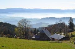Nevelige bergen in het Zwarte Bos/Duitsland Stock Afbeelding