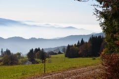 Nevelige bergen in het Zwarte Bos/Duitsland Royalty-vrije Stock Fotografie