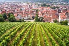Mening van Esslingen Royalty-vrije Stock Foto's