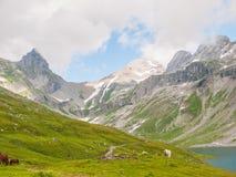 Mening van Glattalpsee (meer) en Ortstock in de vallei stock foto's