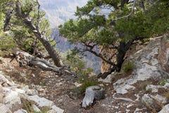 Mening van Grand Canyon stock foto