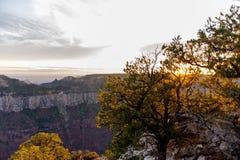 Mening van Grand Canyon stock foto's