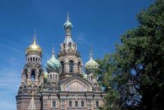 Mening van heilige-Petersburg stad, Rusland Kerk van Verlosser op Gemorst Bloed Royalty-vrije Stock Foto's