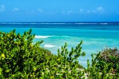 Mening van het azuurblauwe blauwe overzees en de golven door groene struiken Royalty-vrije Stock Fotografie
