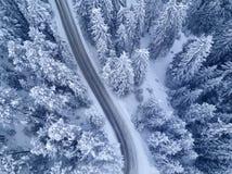 Mening van het de bossen bird's oog van de de winter de sneeuw behandelde pijnboom royalty-vrije stock fotografie