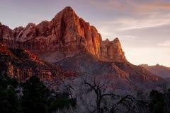 Mening van het de zonsonderganglandschap van het Zion de nationale park van Bewakerpiek, Utah stock foto's
