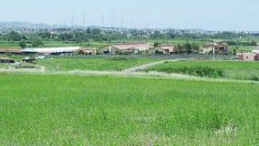 Mening van het dorp van een gazon stock video