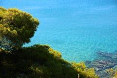 Mening van het duidelijke azuurblauwe water en de stenen met groene naaldbomen Zonnige dag Sithonia, Halkidiki, Griekenland royalty-vrije stock foto