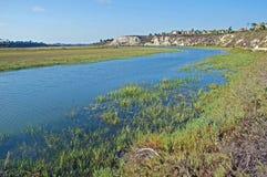 Achter baaimoerasland/estuarium in New Port Beach Californ Stock Afbeeldingen