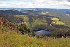 Mening van het hoogste, Zwarte Bos van Feldberg Stock Foto
