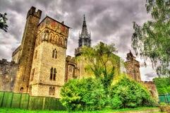 Mening van het Kasteel van Cardiff - Wales royalty-vrije stock foto