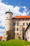 Mening van het kasteel van Nowy Wisnicz Stock Fotografie