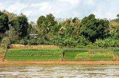 Mening van het landschap van de rivier Nam Khan, Luang Prabang, Laos Exemplaarruimte voor tekst stock afbeeldingen