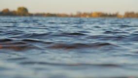 Mening van het meer en de golven van de lage kust stock footage