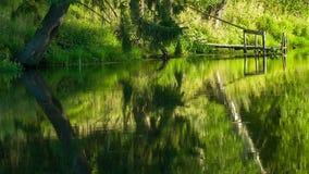 Mening van het meer in kalmte stock footage
