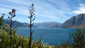Mening van het meer, Nieuw Zeeland Royalty-vrije Stock Foto