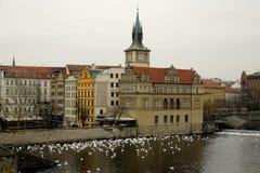 Mening van het museum BedÅ™icha Smetany in Praag Royalty-vrije Stock Foto's