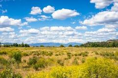 Mening van het platteland op een zonnige bewolkte dag Stock Afbeelding