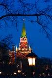Mening van het Rode Vierkant in Moskou stock afbeelding