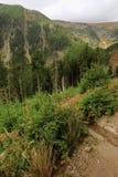 Mening van het rotsachtige landschap Royalty-vrije Stock Fotografie