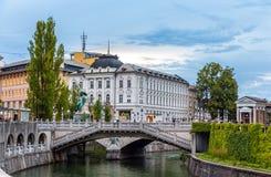 Mening van het stadscentrum van Ljubljana, Slovenië Stock Afbeelding