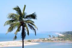 Mening van het strand met kokospalmen Stock Afbeeldingen