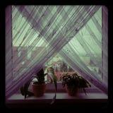 Mening van het venster Royalty-vrije Stock Afbeeldingen