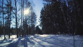 Mening van het venster van een bewegende auto op een de winter sneeuwweg door het bos, de winter in Rusland stock footage