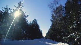 Mening van het venster van een bewegende auto op een de winter sneeuwweg door het bos, de winter in Rusland stock video
