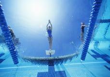 Mening van het vrouwelijke zwemmer duiken in zwembad Royalty-vrije Stock Foto
