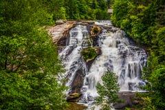 Mening van Hoge Dalingen, van het Bos van de Staat van Dupont, Noord-Carolina royalty-vrije stock foto's