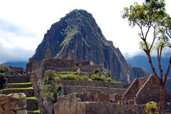Mening van Huayna Picchu van de ruïnes van Macchu Picchu Royalty-vrije Stock Foto