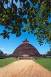Mening van Jetavan oudste Dagoba in Anuradhapura, Sri Lanka Royalty-vrije Stock Foto's
