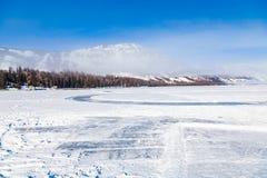 mening van Kanas-Meerbos in de Winter, xinjiang, China stock afbeeldingen
