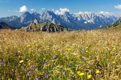 Mening van Karnische Alpen of Alpi Carniche Stock Foto